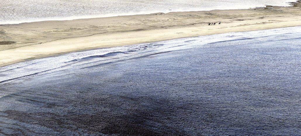 Villasimius, Porto Giunco, cavalli sulla spiaggia.
