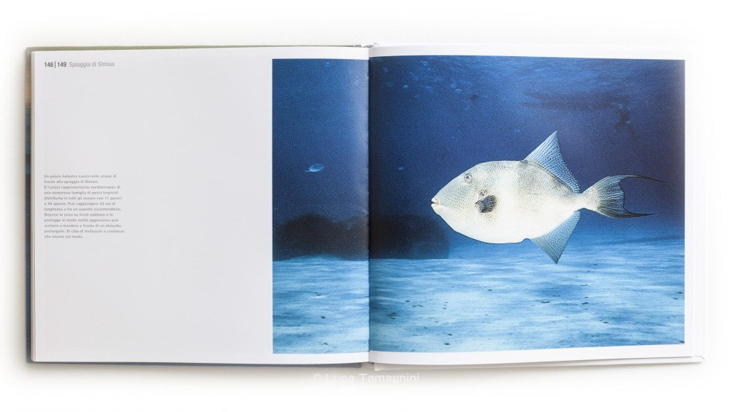 Luca-Tamagnini-Libro-Fotografico-Sardegna-Mari-e-Coste-Villasimius--5