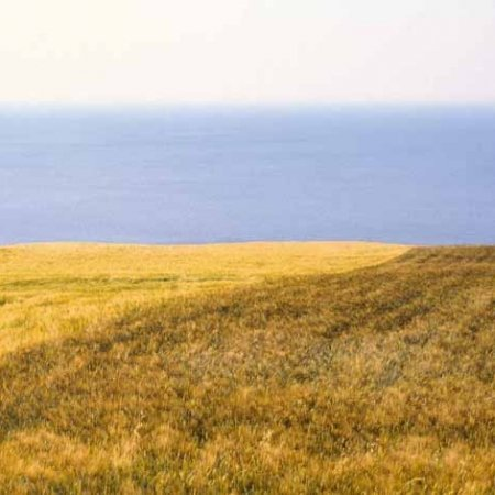 Monte Conero, Portonovo, campi di grano sul mare - Fotografia Fine Art di Luca Tamagnini 110 x 50 cm - Catalogo 1990-009