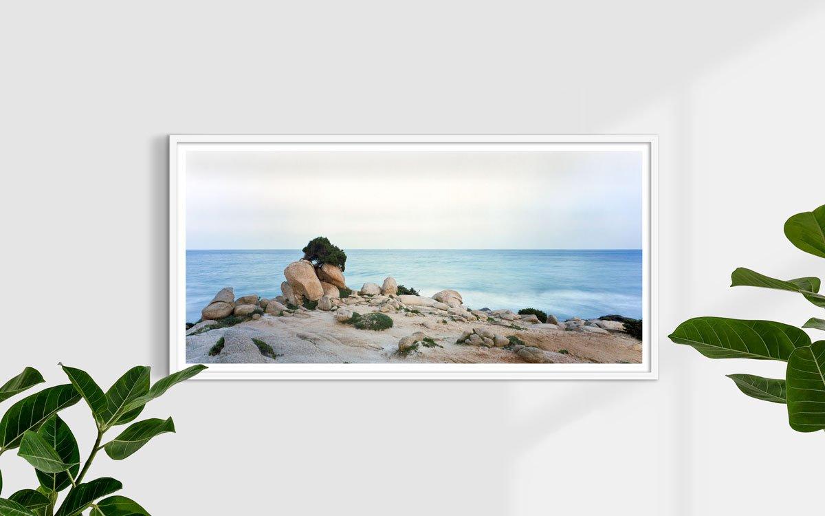 Sardegna, Villasimius, Spiaggia Timi Ama, Porto Giunco, ginepro in riva al mare - Fotografia Fine Art di Luca Tamagnini - Formato 150 x 70 cm (immagine 123 x 93) - Catalogo 2006-003