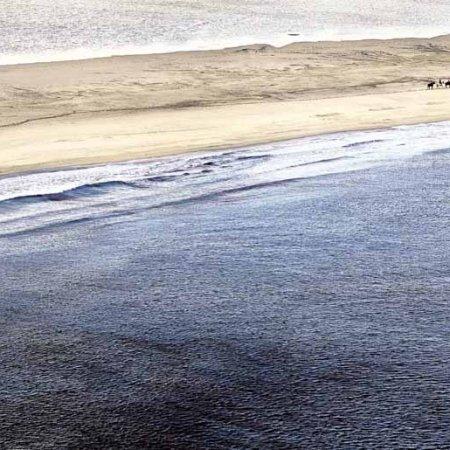 Villasimius cavalli sulla Spiaggia Timi Ama Porto Giunco - Fotografia Fine Art di Luca Tamagnini 110 x 50 cm - Catalogo 2010-001 - Vendita foto