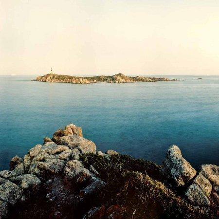 Isola dei Cavoli 2011/ Luca Tamagnini Catalogo 2011-002B / dettaglio 01