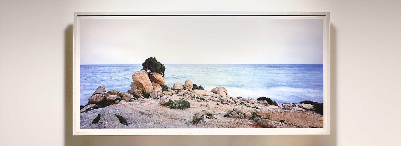 Porto Giunco Ginepro 2006 / 150 x 70 cm / Luca Tamagnini Catalogo 2006-003